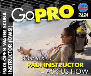 PADI DIVEMASTER / INSTRUCTOR COURSE KOMODO